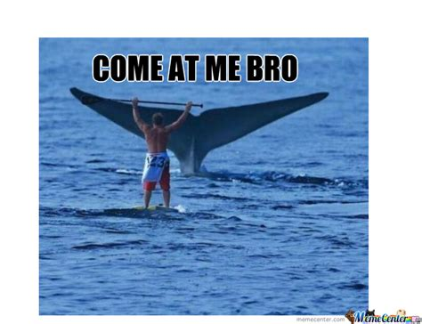 Whale Meme - come at me bro lvl whale by exw psixologika meme center