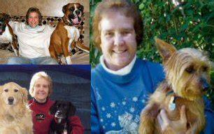 creature comforts pet care creature comforts animal care professional animal sitting
