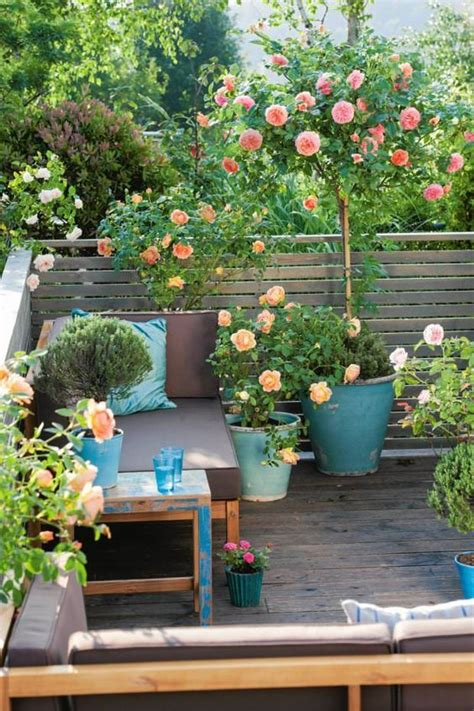 small balcony garden ideas small balcony garden ideas and tips houz buzz