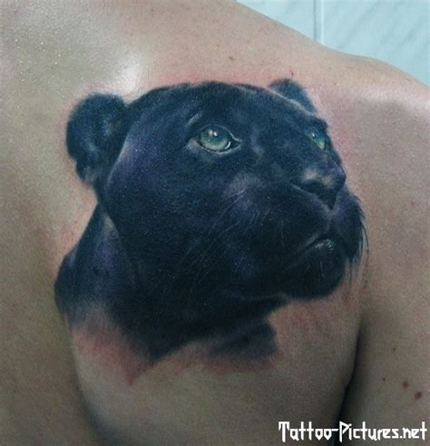 cute and funny very realistic black panther tattoo on