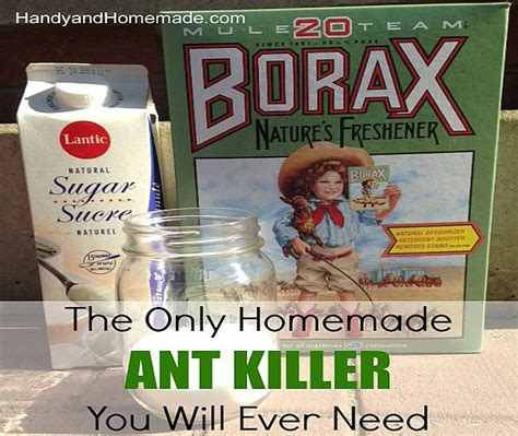 ant killer recipes diy projects craft ideas how