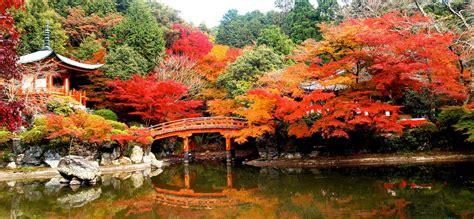 imagenes korea japon kyoto a storehouse of japanese culture infohostels com