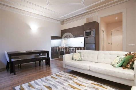 2 Bedroom Furnished Apartments by 2 Bedroom Furnished Apartment For Rent Eixle With Wif