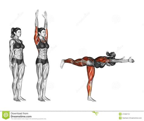 V Ups On Bench Yoga Exercise Warrior Pose Two Virabhadrasana Two