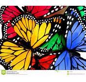 Mariposas Coloridas Imagen De Archivo Libre Regal&237as