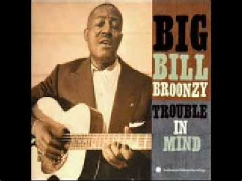 black brown and white big bill broonzy black brown and white