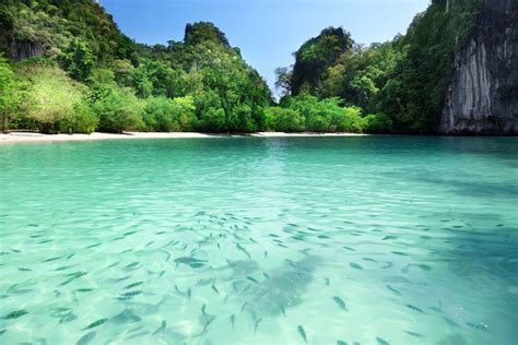 charter boat krabi krabi private yacht charter destinations boat in the bay