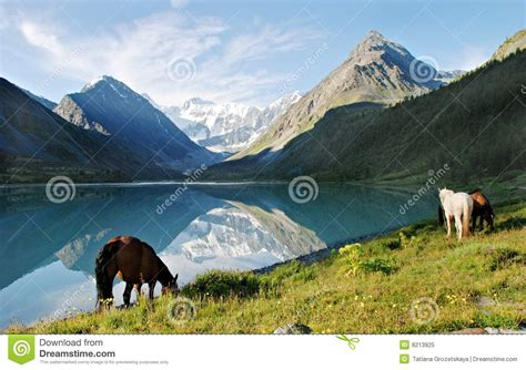 Horizon Kem mountain lake ak kem royalty free stock photo cartoondealer 8213883