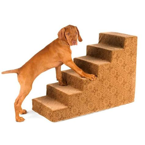 Dog Ramp For Bed The Best Steps And Ramps For Small Dogs I Love My Chi