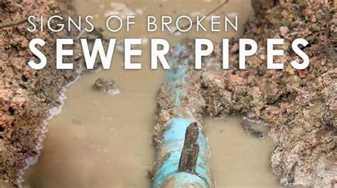 sewage coming out of bathtub best 25 toilet drain ideas on pinterest diy shower