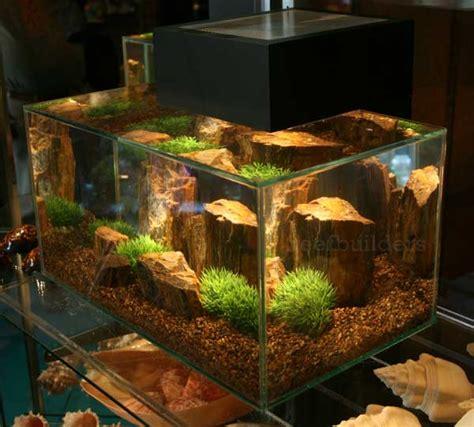 aquarium design edge fluval edge aquarium aquarium pinterest aquariums