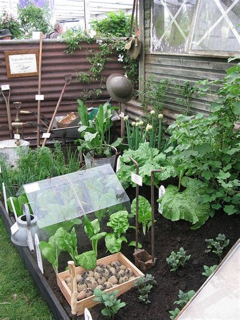 511 Best Container Gardening Ideas Images On Pinterest Mini Vegetable Garden