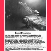 7 best Lucid dr...