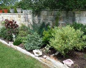 gt tropical plants and central texas central texas gardening