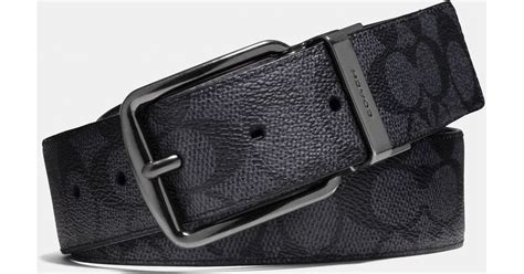 coach wide harness cut to size reversible signature belt in gray for lyst