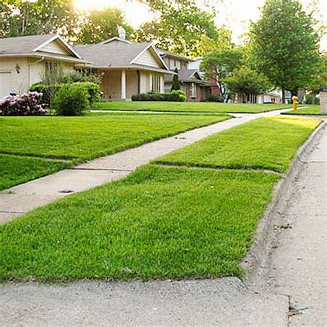 Ideas To Decorate A Small Living Room Cool Landscaping Planting The Grass Strip In Front Of