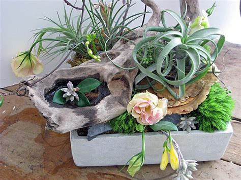 Succulent Planters Ideas by Creative Succulent Planter Ideas
