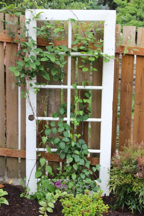 Trellis For Clematis Ideas 25 best ideas about clematis trellis on