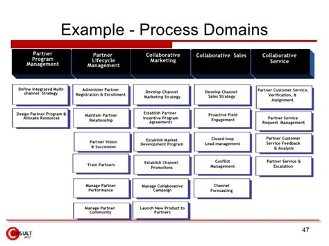 Exle Process Domains Partner Program Management Partner Lifecycle Management Define Sales Program Template