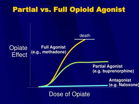 Stabilization Vs Detox Opioid by Ppt Buprenorphine Treatment A For