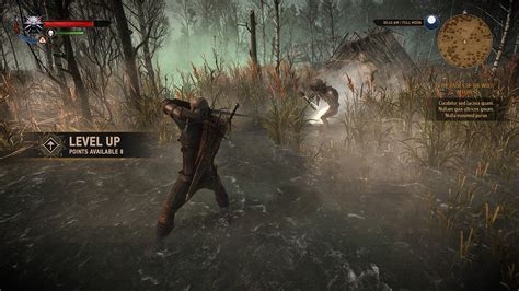 Hud Hud Level Dewa fernando forero the witcher 3 ui