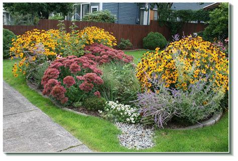 rain gardens restoring the water cycle cincy rain