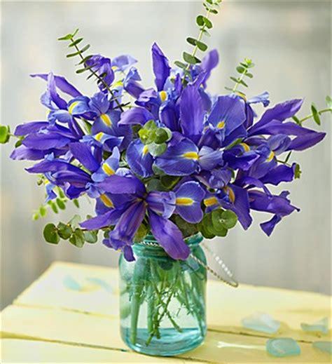popular spring flowers popular spring flowers petal talk 1 800 flowers com