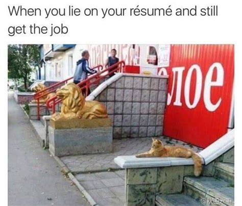 Lying On Your Resume by Lying On Your Resume