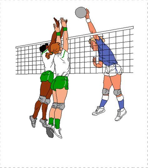 Jaring Pagar Lapanga Bola Volly Voli Voly Volley 1 gambar dan ukuran lapangan bola voli elhouz