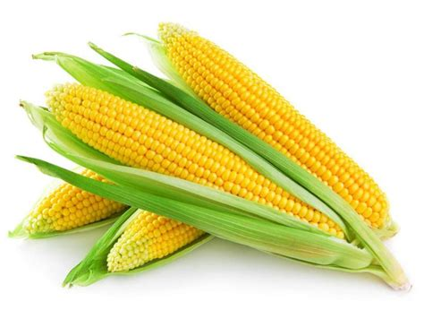 how many calories are in a corn corn calories finediets