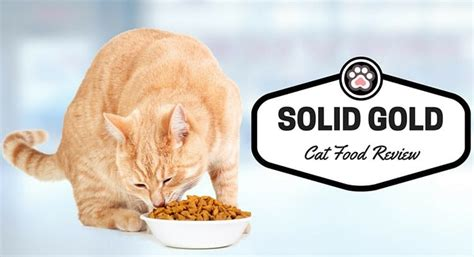 solid gold food reviews solid gold cat food review tinpaw