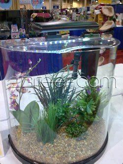 tetra  moon  gallon glass aquarium kit reef