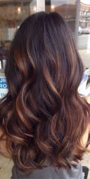 hair coloring tips best 20 brunette hair ideas on pinterest ashy brown