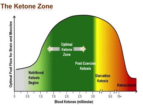 nutritional ketosis nutritional ketosis