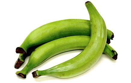 green plantain bananas information recipes  facts