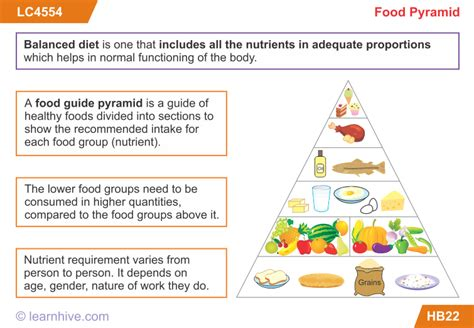 carbohydrates for grade 8 learnhive icse grade 5 science food lessons exercises