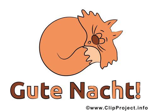 Gute Nacht Katzen Bilder by Schlafende Katze Bild Gute Nacht Bilder