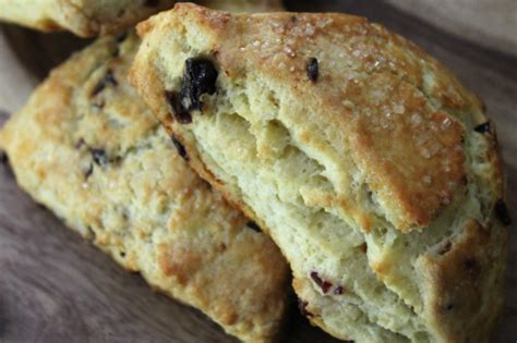 Trio Dried Blueberry 225g 4 berry scones rants raves and rations
