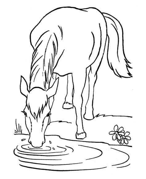free online coloring pages of horses free printable horse coloring pages for kids
