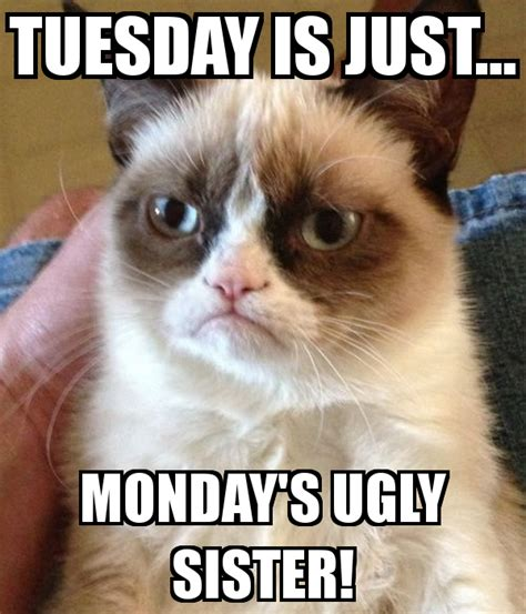 tuesday   mondays ugly sister poster