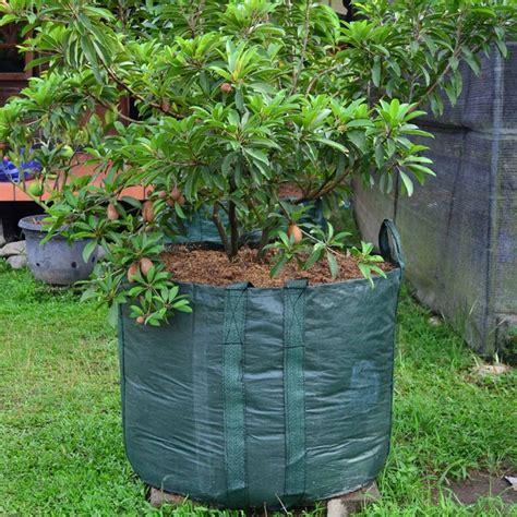 Harga Planter Bag 100 Liter planter bag hijau 500 liter bibitbunga