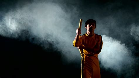 lee c stock photos and bruce lee stock footage video shutterstock