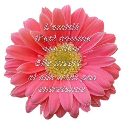 Fleur De L Amitié by Citations Et Panneaux 224 Partager Beaux Panneaux