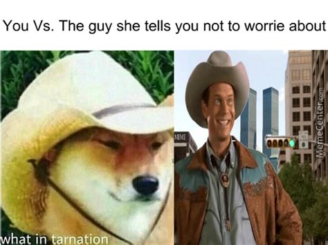 tarnation memes  collection  funny