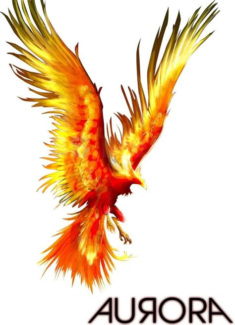 fire phoenix tattoo designs new colors design 187 ideas