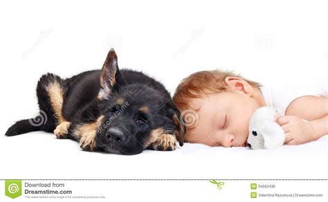 puppy sleeping with baby sleeping baby boy and puppy royalty free stock photos image 34562438