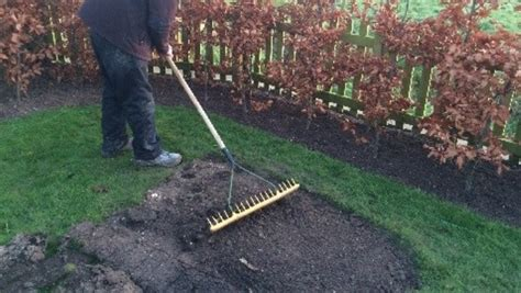 Landscape Soil Rake How To Repair Your Lawn With Turf The Lawn Store