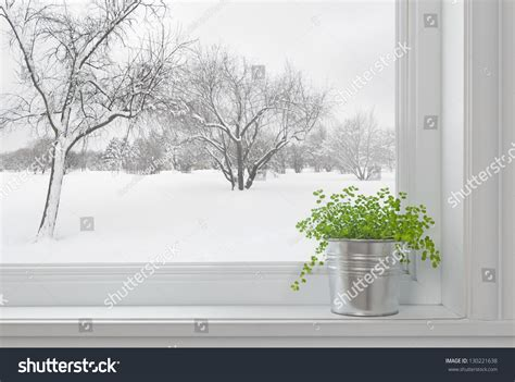 Window Sill Plants Winter Winter Landscape Seen Through The Window And Green Plant