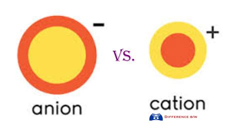 cations and anions picture pictures