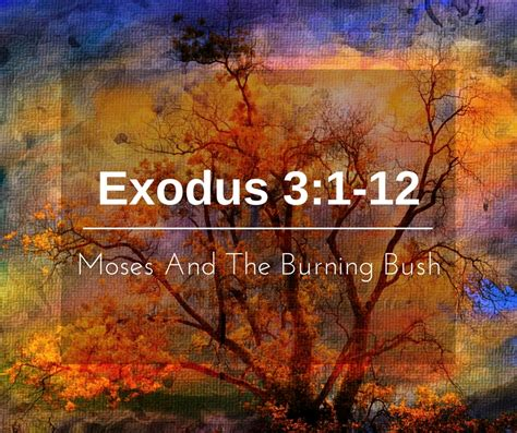 The Burning Bush moses and the burning bush weekly study guide true